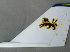 VF-213 Black Lions Tail