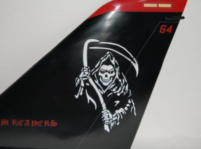 VF-101 Grim Reapers, F-14