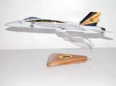 VFA-25 Fist of the Fleet F/A-18e Model