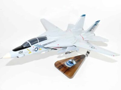 VF-143 Pukin Dogs F-14 Tomcat Model