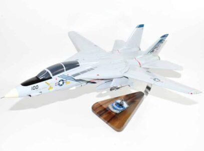 VF-143 Pukin Dogs F-14 Tomcat Model