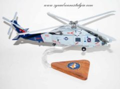 HSM-74 Swamp Foxes MH-60R Model
