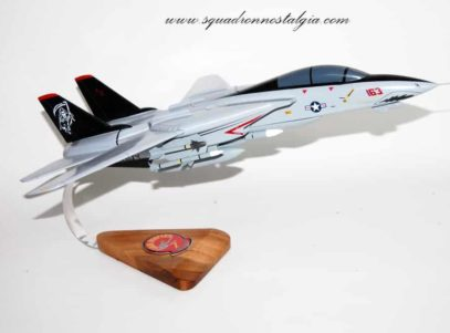 VF-101 Grim Reapers F-14d Tomcat Model