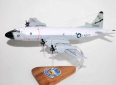 VP-31 Black Lightnings P-3c (159503) Model