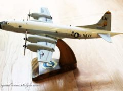 VP-44 Golden Pelicans P-3C Model