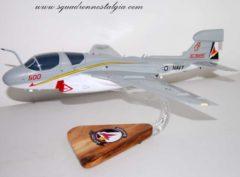 VAQ-134 EA-6b Model