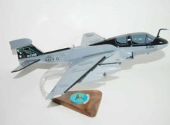 VAQ-135 Black Ravens EA-6b (USS Nimitz) Model