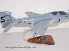 VAQ-137 Rooks EA-6b Mode