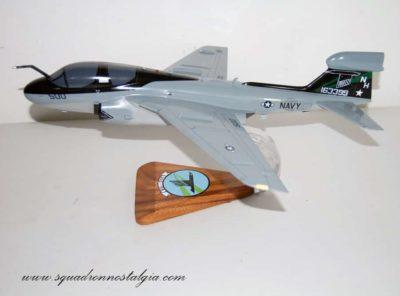 VAQ-135 Black Ravens EA-6b Model