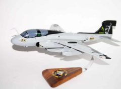 VAQ-209 Star Warriors EA-6b (2010) Model