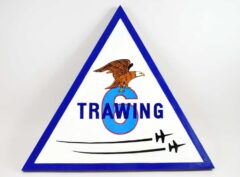 TAW-6 Training Air Wing Six Plaque