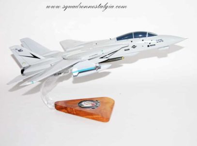 VF-24 Fighting Renegades F-14a Model