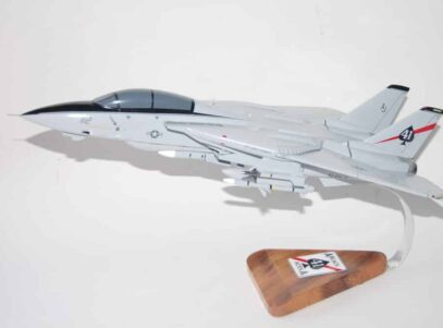 VF-41 Black Aces F-14a Tomcat (1996) Model