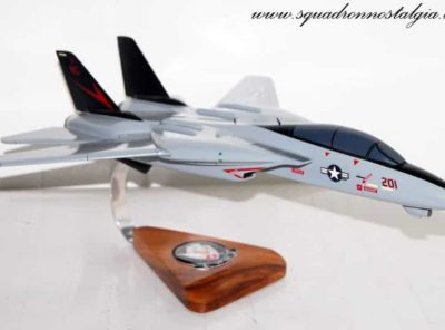 VF-24 Fighting Renegades F-14 Model