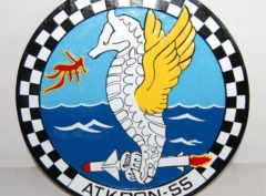VA-55 Warhorses Plaque