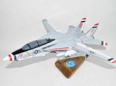 VF-124 Gunfighters F-14a (1976) model
