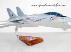 VF-102 Diamondbacks F-14a (1992) Model