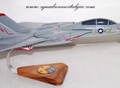 VF-111 Sundowners (Shark Teeth) F-14a Model