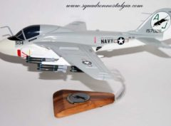 VA-35 Black Panthers A-6 (1972) Model