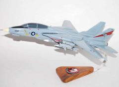 VF-201 Hunters F-14a Model