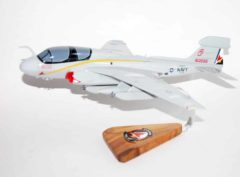 VAQ-134 GARUDAS EA-6b Model