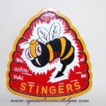 VA-113 Stingers Plaque
