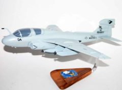 VMAQ-3 Moon Dogs EA-6b Model