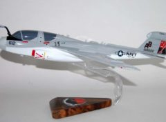 VAQ-133 Wizards EA-6b Model