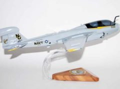 VAQ-138 Yellow Jackets EA-6b Model