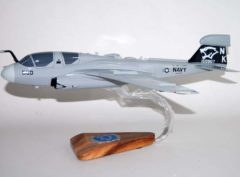 VAQ-139 Cougars EA-6b Model