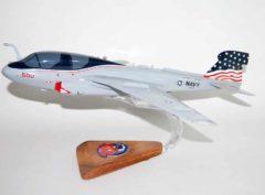 VAQ-140 Patriots EA-6b Model