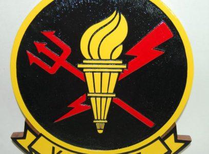VAW-125 Torch Bearers Plaque