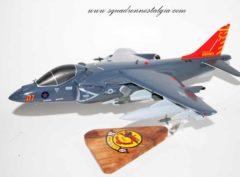VMA-211 Wake Island Avengers AV-8b Model