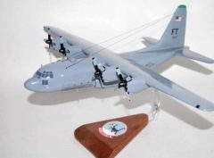 41st Airlift Squadron Blackcats Model
