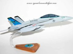 VAQ-135 Black Ravens EA-18G Model