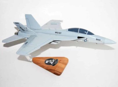 VAQ-137 Rooks EA-18G Model