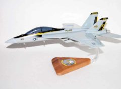VAQ-138 Yellow Jackets EA-18G Model
