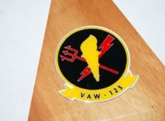 VAW-125 Torch bearers E-2C (2004) Model