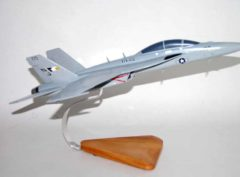VFA-122 Flying Eagles F/A-18F Model