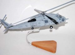 HSM-37 Easyriders MH-60R Model