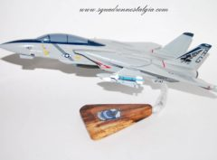 VF-143 Pukin Dogs F-14 Model