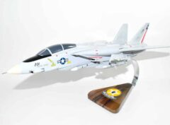 VF-202 Superheats F-14 Model