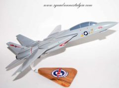 VF-194 Red Lightnings F-14 Model