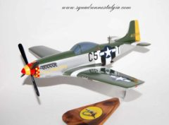 364th Fighter Squadron P-51 Mustang Model