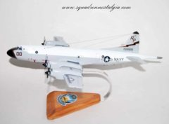 VP-31 Black Lightnings P-3c (156519) Model