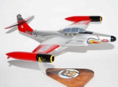 61st Fighter Interceptor Squadron F-89 Model