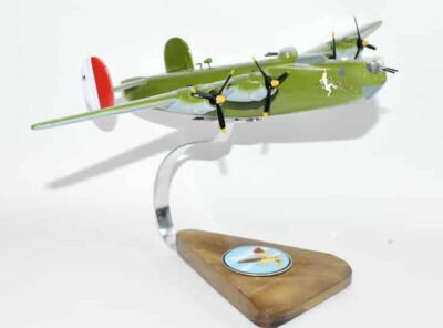 7th BS 'The Near Sighted Robin' B-24H Model