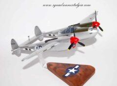 Honey Bunny P-38 Lightning Model