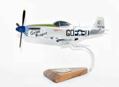 493rd Fighter Squadron P-51 Model