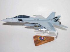 VX-23 Salty Dogs F/A-18F Model
